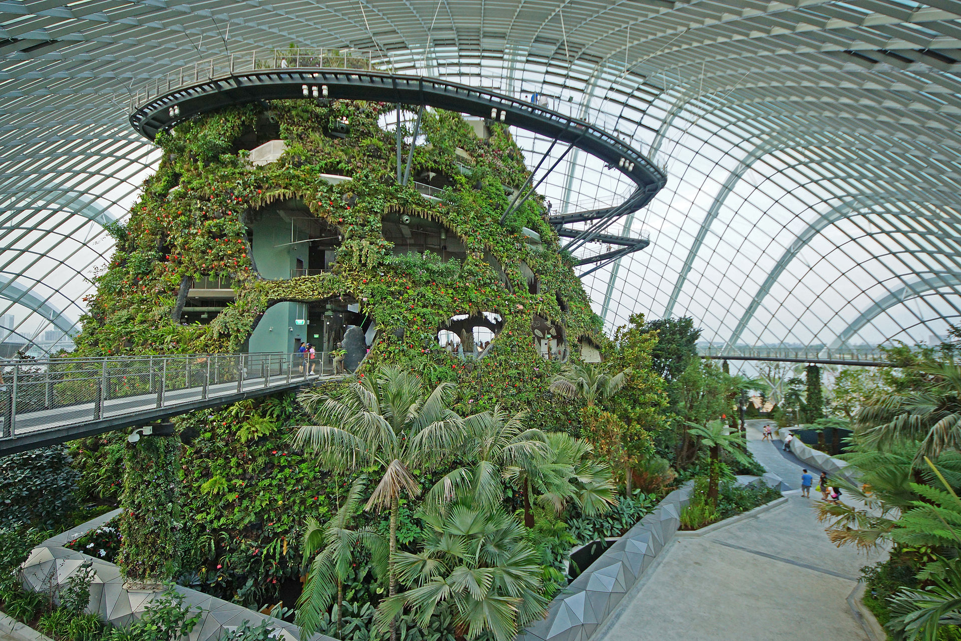 Cloud_Forest,_Gardens_by_the_Bay,_Singapore_-_20120617-05