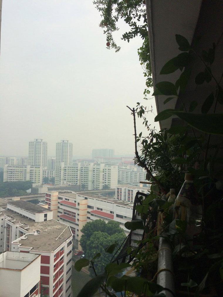 haze-is-back-03