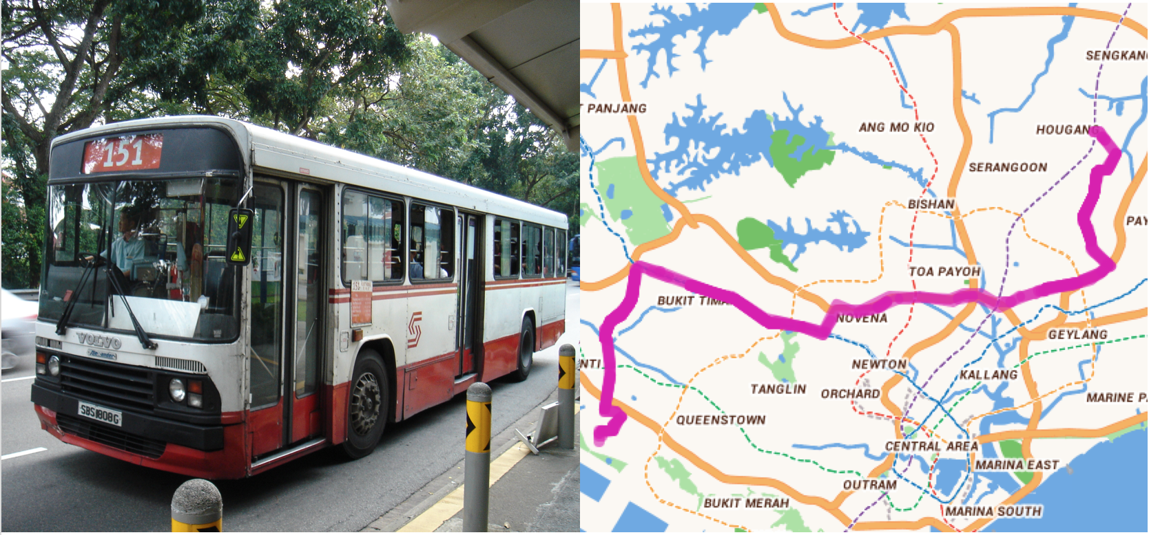 S Pore S Bus Numbers Not Entirely At Random Assigned Based On Some Patterns Mothership Sg News From Singapore Asia And Around The World