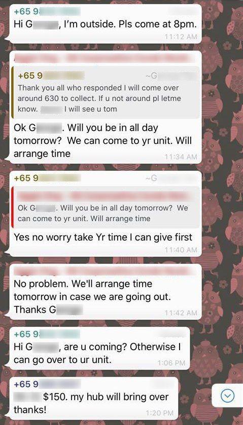 condo cleaner whatsapp