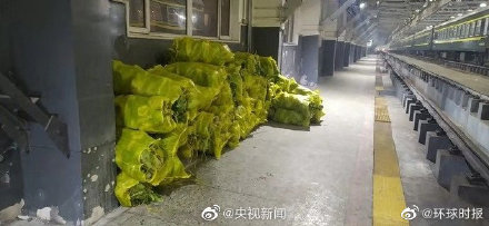 cabbage wuhan
