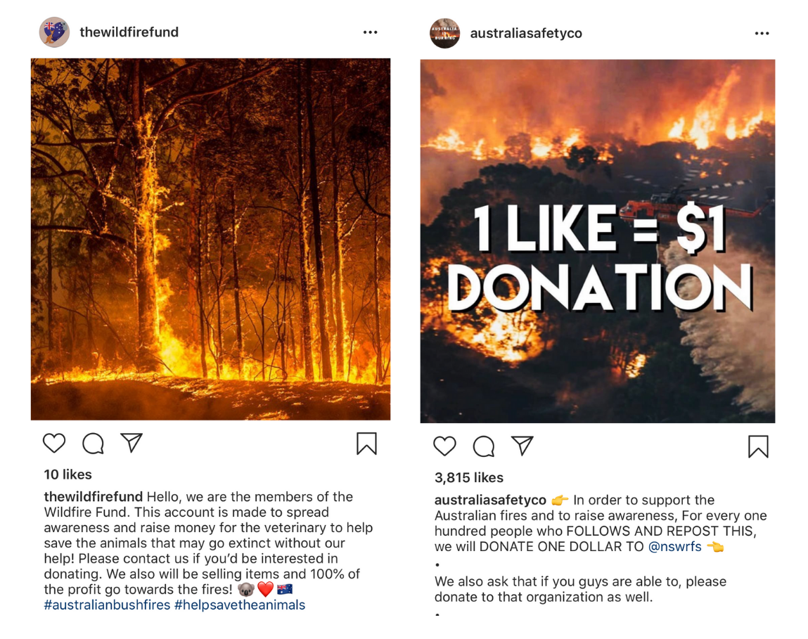 instagram bushfire fundraising scams