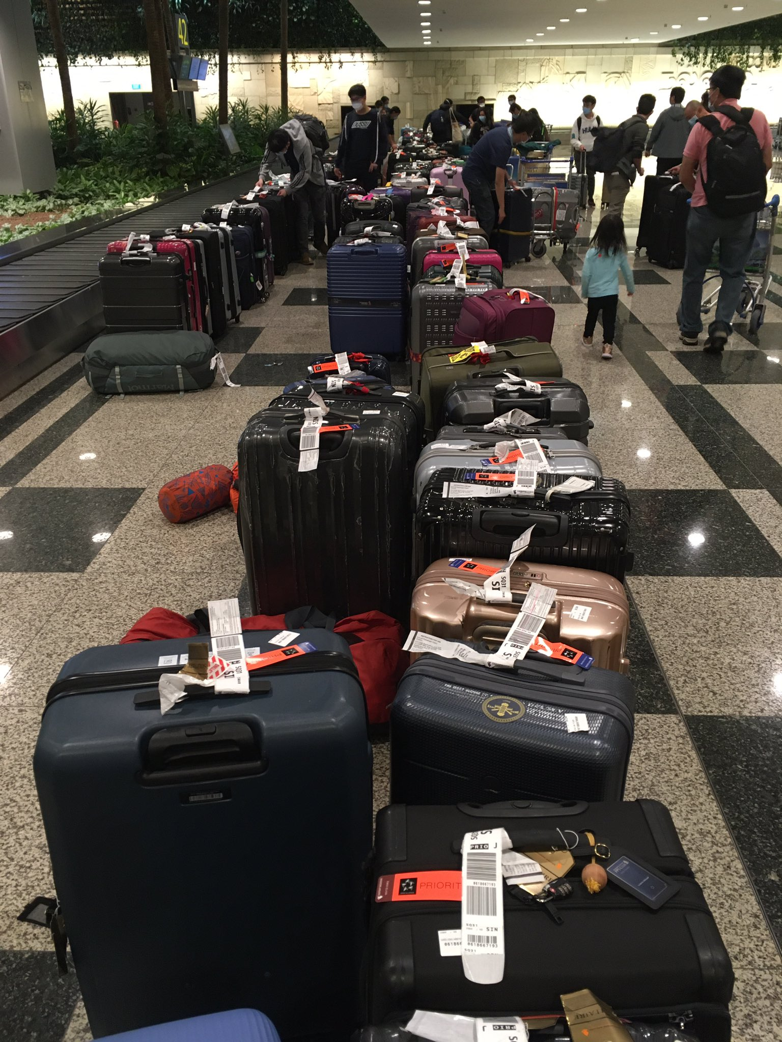 photo of neatly arranged luggage at Changi Airport before SHN