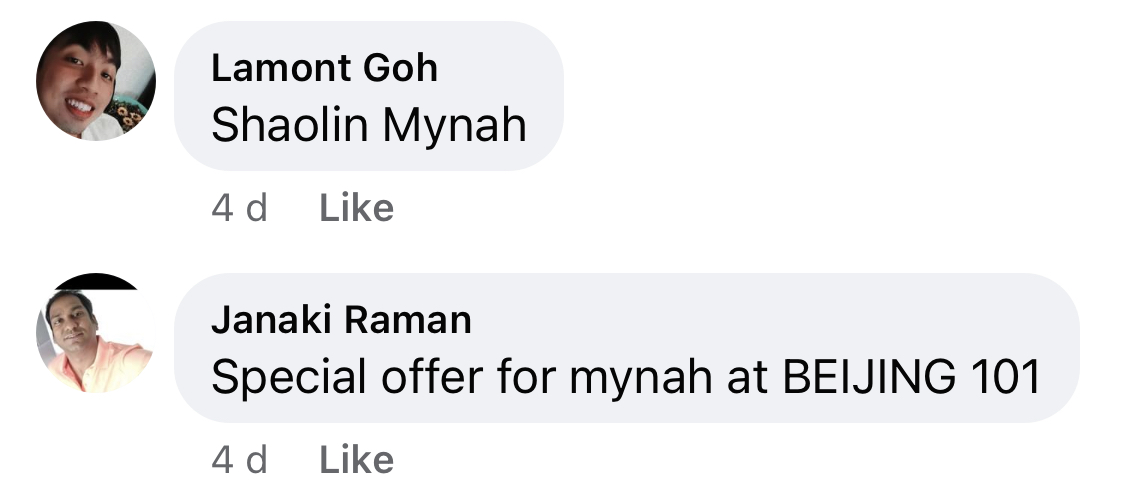 """Screenshot of two comments which read """"Shaolin Mynah"""" and """"Special offer for mynah at Beijing 101"""""""